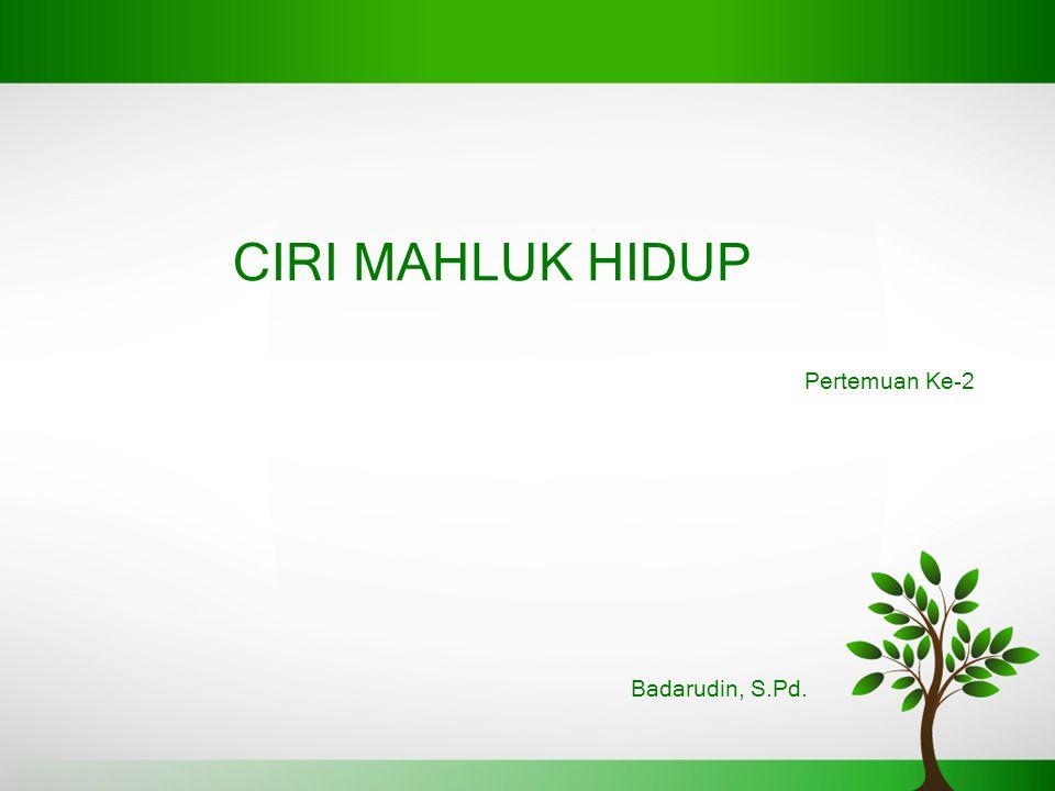 CIRI MAHLUK HIDUP Badarudin, S.Pd. Pertemuan Ke-2