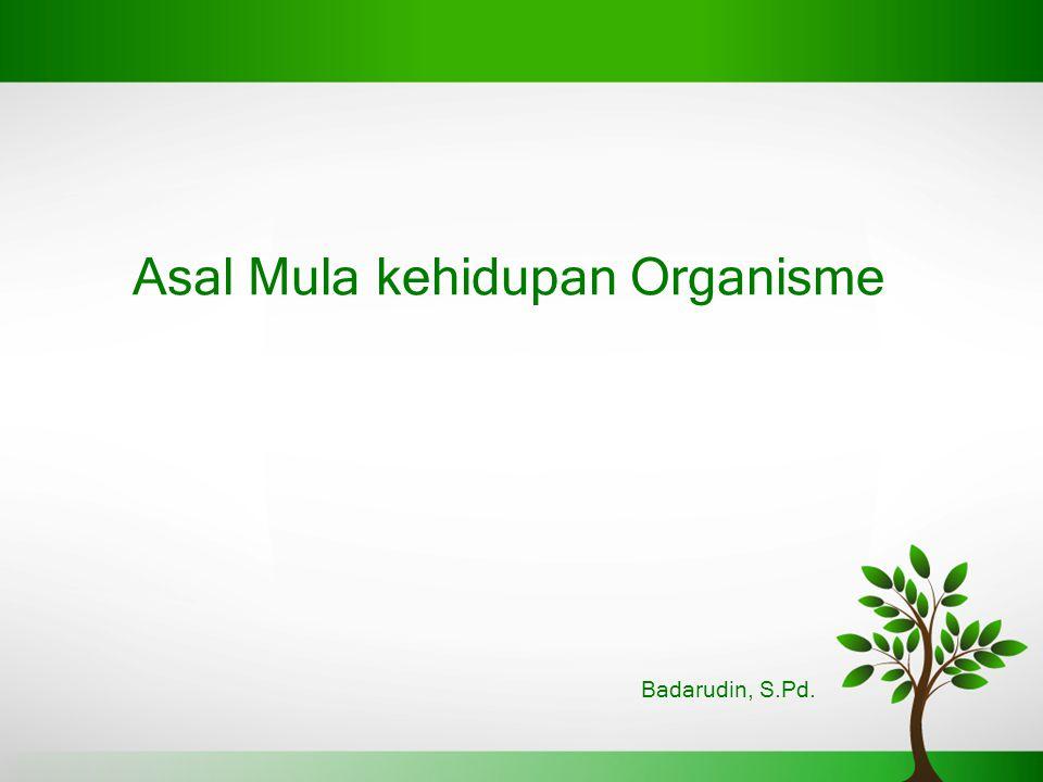 Asal Mula kehidupan Organisme Badarudin, S.Pd.