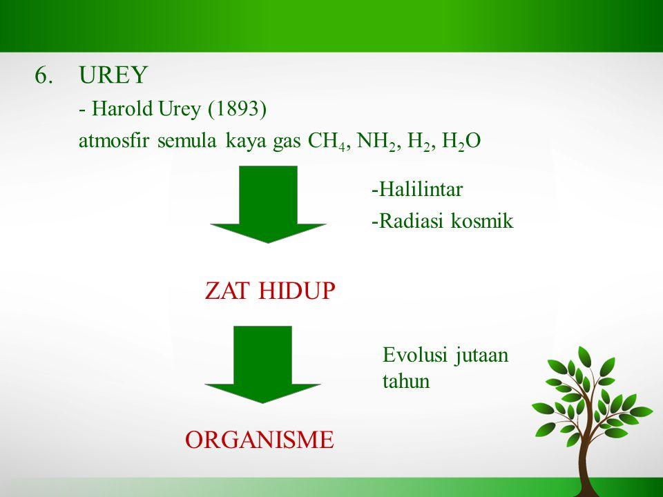 6.UREY - Harold Urey (1893) atmosfir semula kaya gas CH 4, NH 2, H 2, H 2 O -Halilintar -Radiasi kosmik Evolusi jutaan tahun ZAT HIDUP ORGANISME