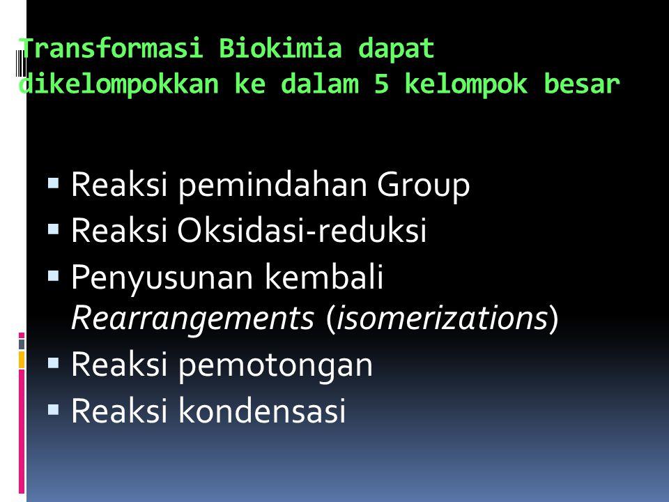 Stereoisomers: Sama secara kimia, berbeda secara biologi