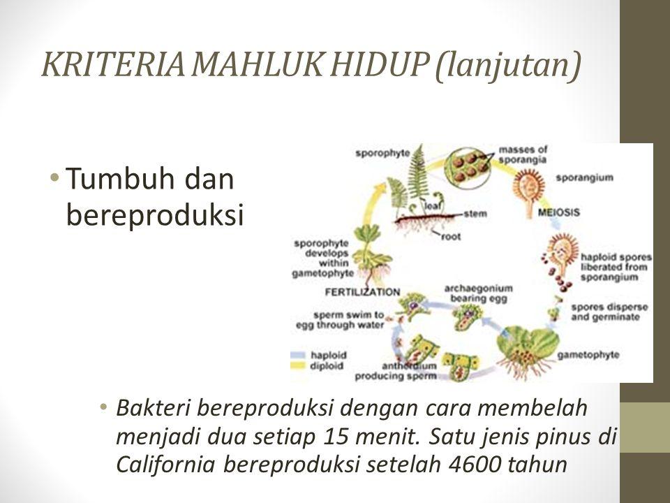 KRITERIA MAHLUK HIDUP (lanjutan) Tumbuh dan bereproduksi Bakteri bereproduksi dengan cara membelah menjadi dua setiap 15 menit. Satu jenis pinus di Ca