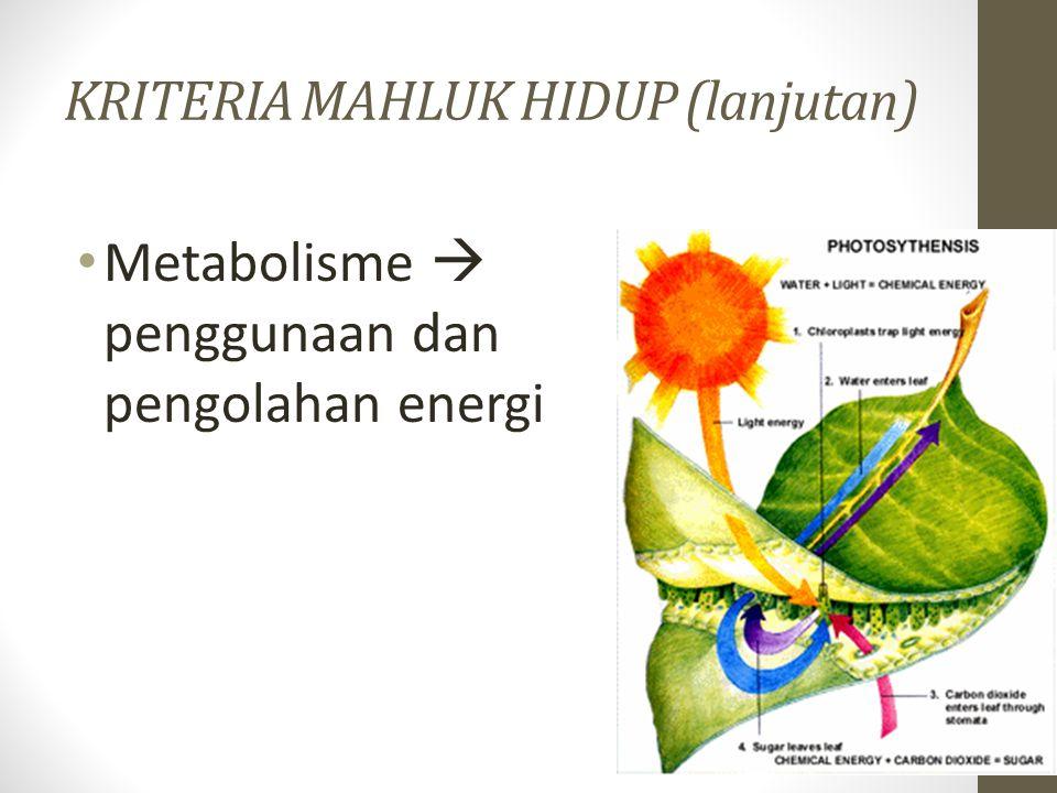 KRITERIA MAHLUK HIDUP (lanjutan) Metabolisme  penggunaan dan pengolahan energi