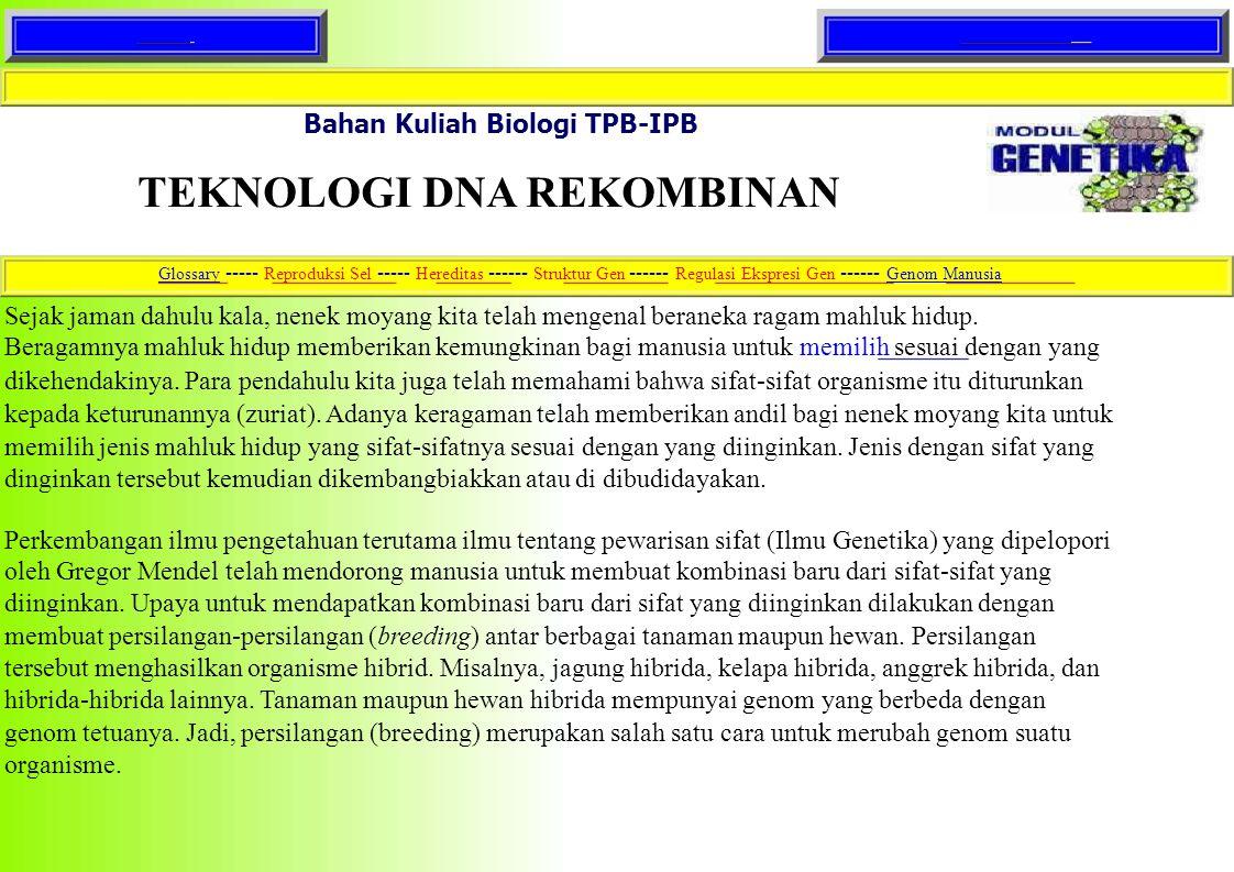 HomeText lengkap Bahan Kuliah Biologi TPB-IPB TEKNOLOGI DNA REKOMBINAN GlossaryGlossary ----- Reproduksi Sel ----- Hereditas ------ Struktur Gen -----