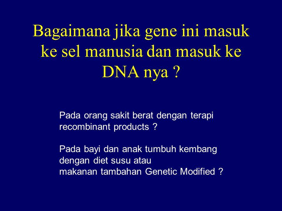 Bagaimana jika gene ini masuk ke sel manusia dan masuk ke DNA nya .