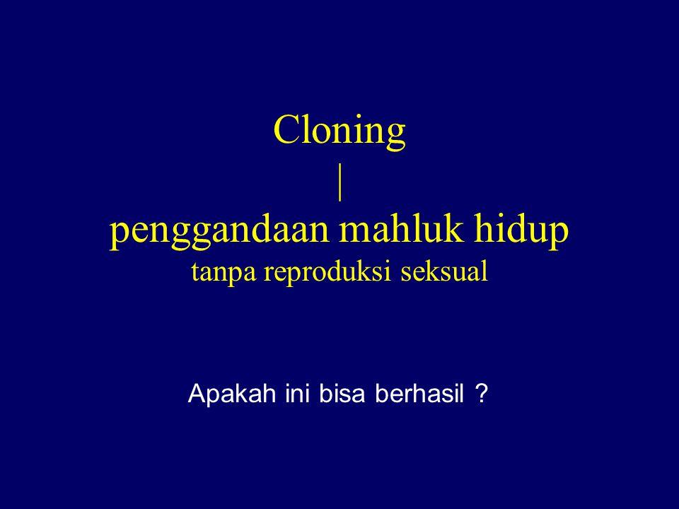 Cloning | penggandaan mahluk hidup tanpa reproduksi seksual Apakah ini bisa berhasil ?