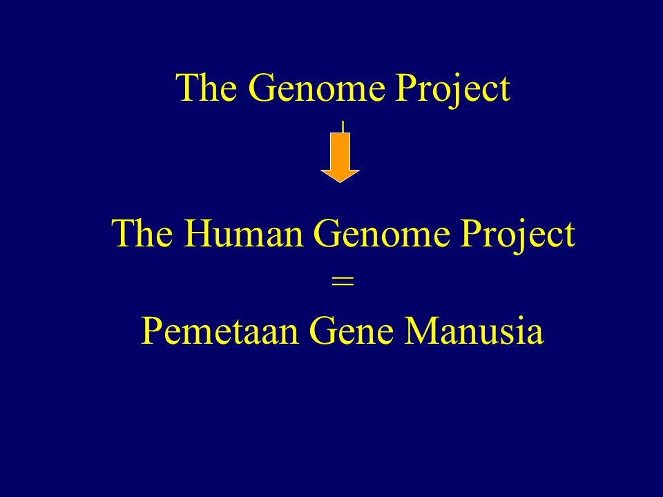 The Genome Project | The Human Genome Project = Pemetaan Gene Manusia