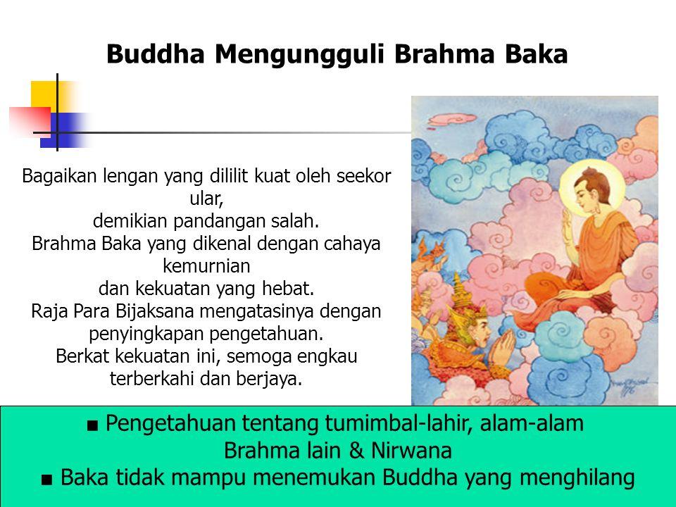 Buddha Mengungguli Brahma Baka Bagaikan lengan yang dililit kuat oleh seekor ular, demikian pandangan salah. Brahma Baka yang dikenal dengan cahaya ke