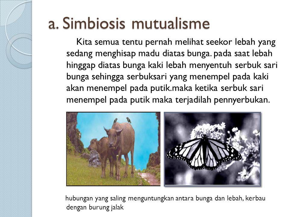 b.Simbiosis parasitisme hubungan antar mahluk hidup ada yang satu diuntungkan dan lainnya dirugikan yang disebut parasit.