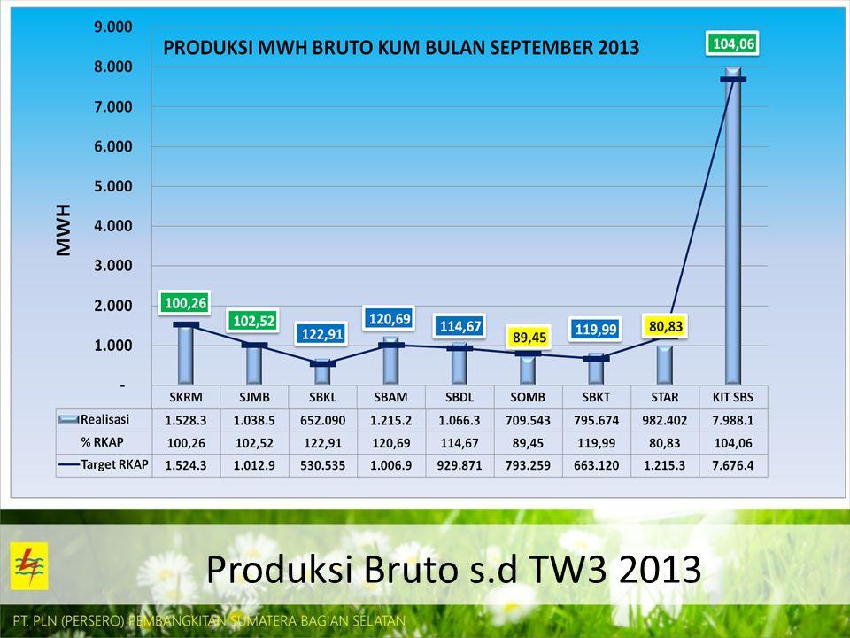 Produksi Bruto s.d TW3 2013