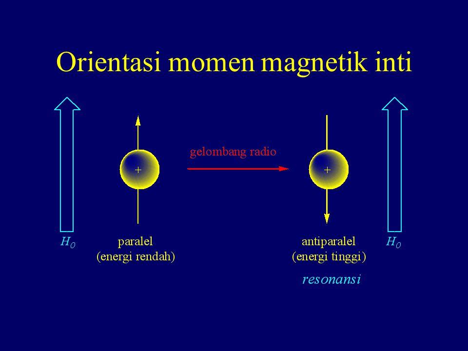 Orientasi momen magnetik inti