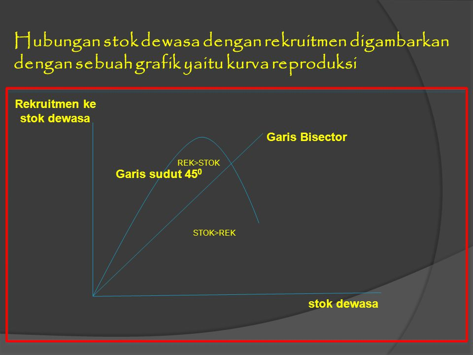 Hubungan stok dewasa dengan rekruitmen digambarkan dengan sebuah grafik yaitu kurva reproduksi Garis Bisector stok dewasa Garis sudut 45 0 Rekruitmen ke stok dewasa REK>STOK STOK>REK