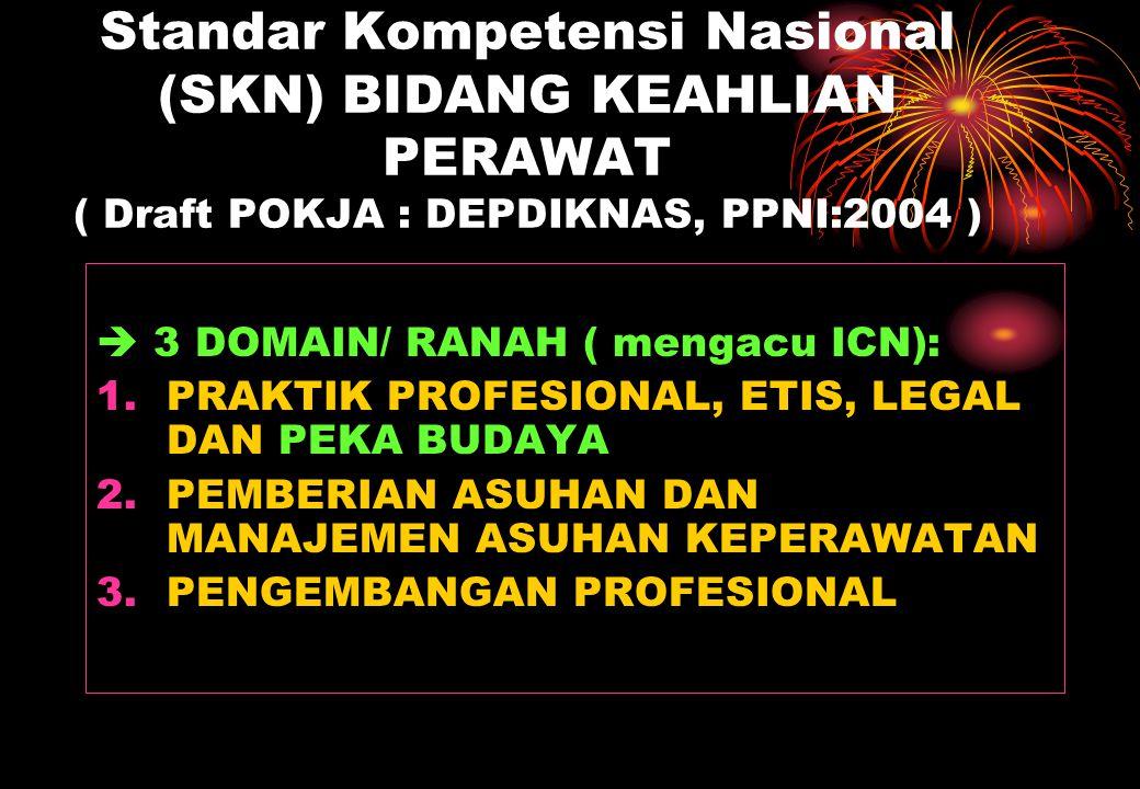 Standar Kompetensi Nasional (SKN) BIDANG KEAHLIAN PERAWAT ( Draft POKJA : DEPDIKNAS, PPNI:2004 )  3 DOMAIN/ RANAH ( mengacu ICN): 1.PRAKTIK PROFESION