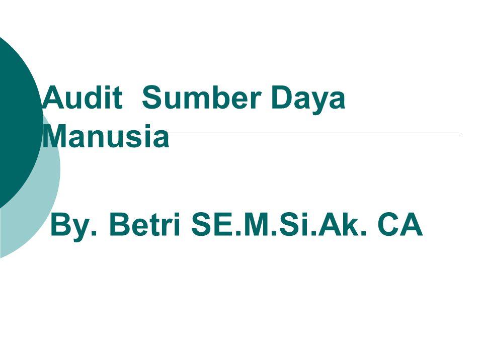 Audit Sumber Daya Manusia By. Betri SE.M.Si.Ak. CA
