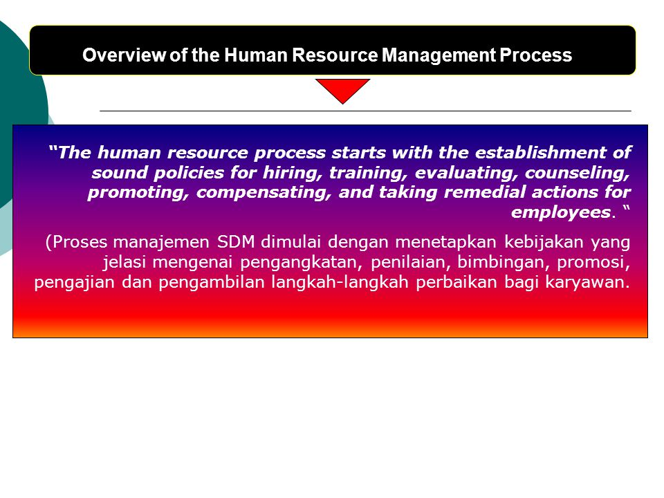 "Overview of the Human Resource Management Process ""The human resource process starts with the establishment of sound policies for hiring, training, ev"