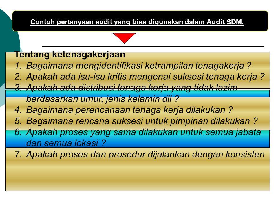 Contoh pertanyaan audit yang bisa digunakan dalam Audit SDM. Tentang ketenagakerjaan 1.Bagaimana mengidentifikasi ketrampilan tenagakerja ? 2.Apakah a