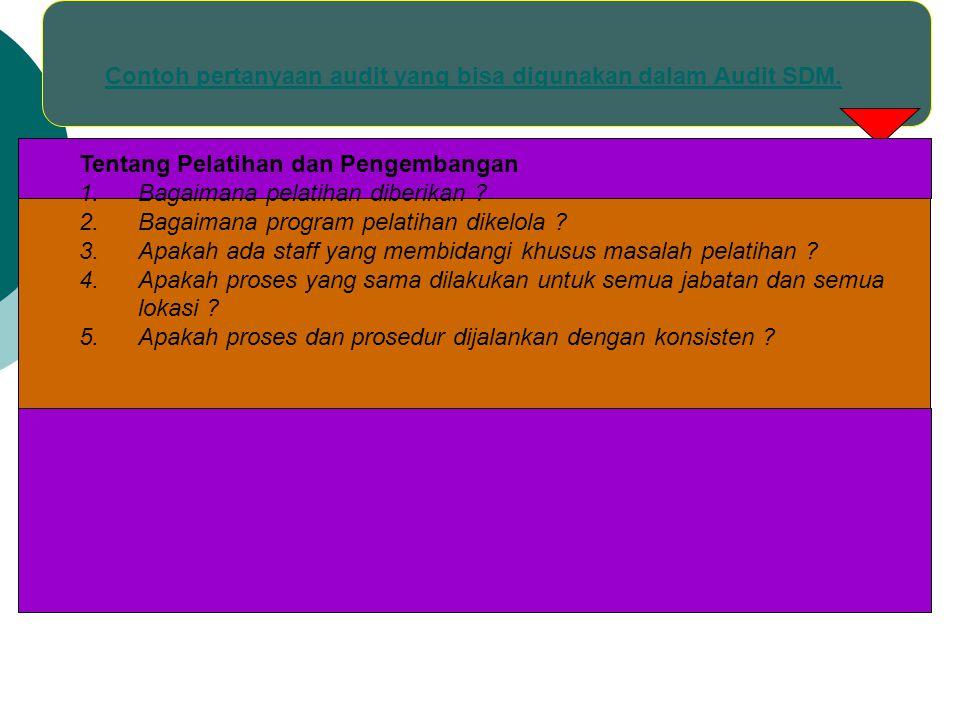 Contoh pertanyaan audit yang bisa digunakan dalam Audit SDM. Tentang Pelatihan dan Pengembangan 1.Bagaimana pelatihan diberikan ? 2.Bagaimana program