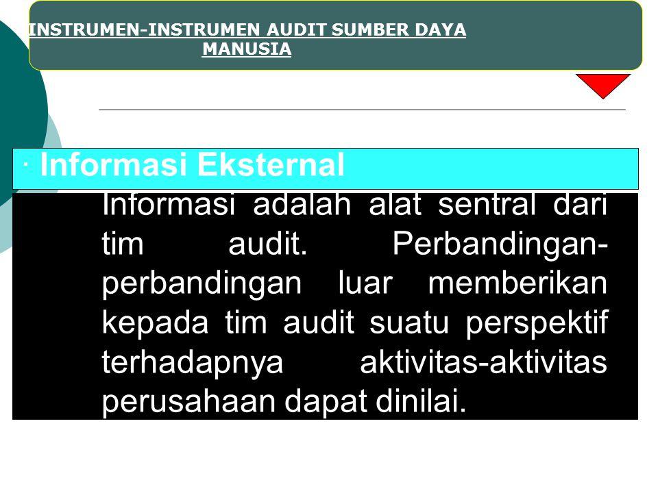 INSTRUMEN-INSTRUMEN AUDIT SUMBER DAYA MANUSIA · Informasi Eksternal Informasi adalah alat sentral dari tim audit. Perbandingan- perbandingan luar memb