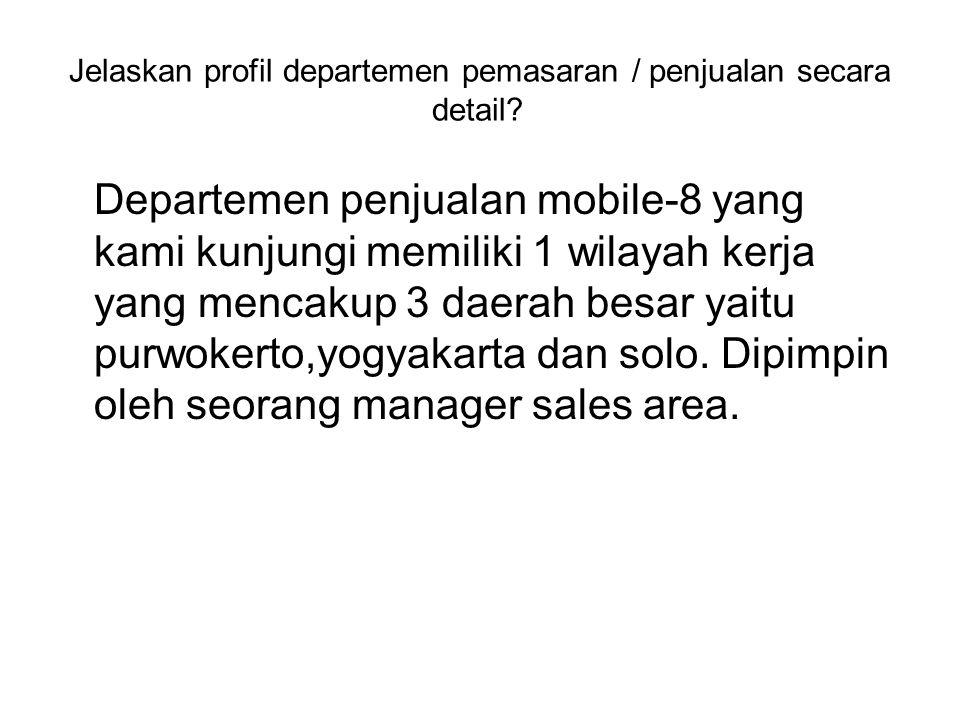 Jelaskan profil departemen pemasaran / penjualan secara detail.