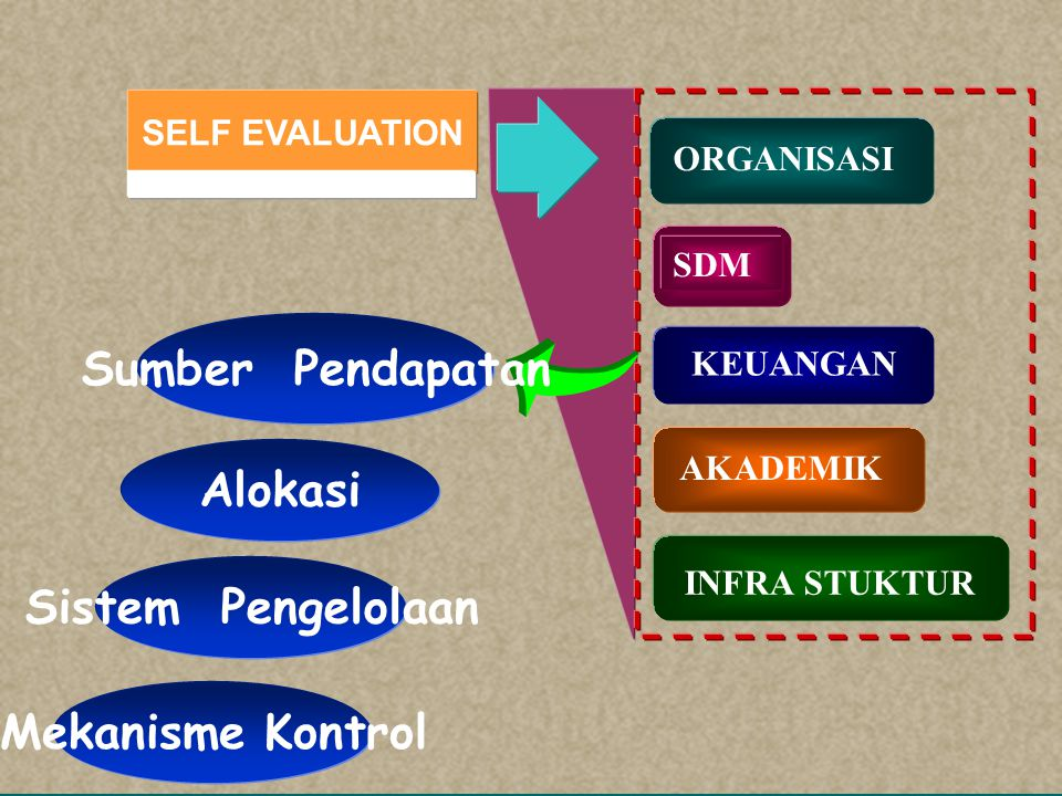 SELF EVALUATION SDM KEUANGAN AKADEMIK INFRA STUKTUR ORGANISASI Jumlah / kompetensi Tingkat pendidikan Pengembangan Pengelolaan Rekruitmen