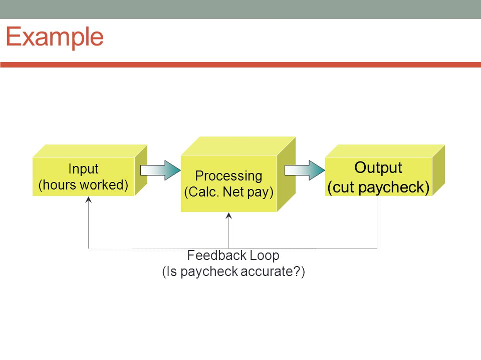 Processing (Calc. Net pay) Example Output (cut paycheck) Input (hours worked) Feedback Loop (Is paycheck accurate?)