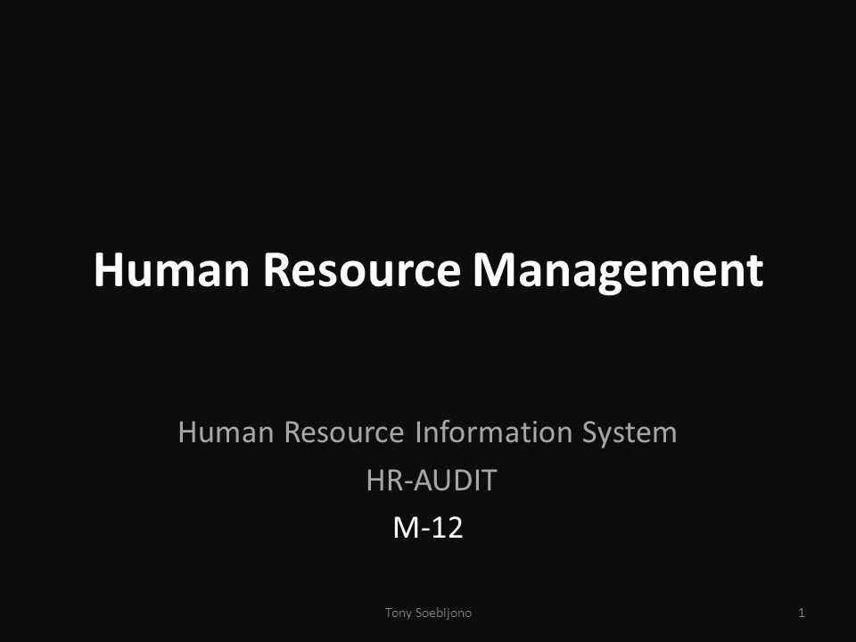 Human Resource Management Human Resource Information System HR-AUDIT M-12 1Tony Soebijono