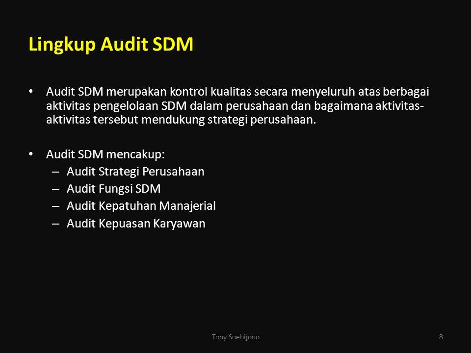 Lingkup Audit SDM Audit SDM merupakan kontrol kualitas secara menyeluruh atas berbagai aktivitas pengelolaan SDM dalam perusahaan dan bagaimana aktivi
