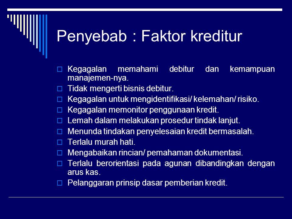 Penyebab : Faktor kreditur  Kegagalan memahami debitur dan kemampuan manajemen-nya.  Tidak mengerti bisnis debitur.  Kegagalan untuk mengidentifika