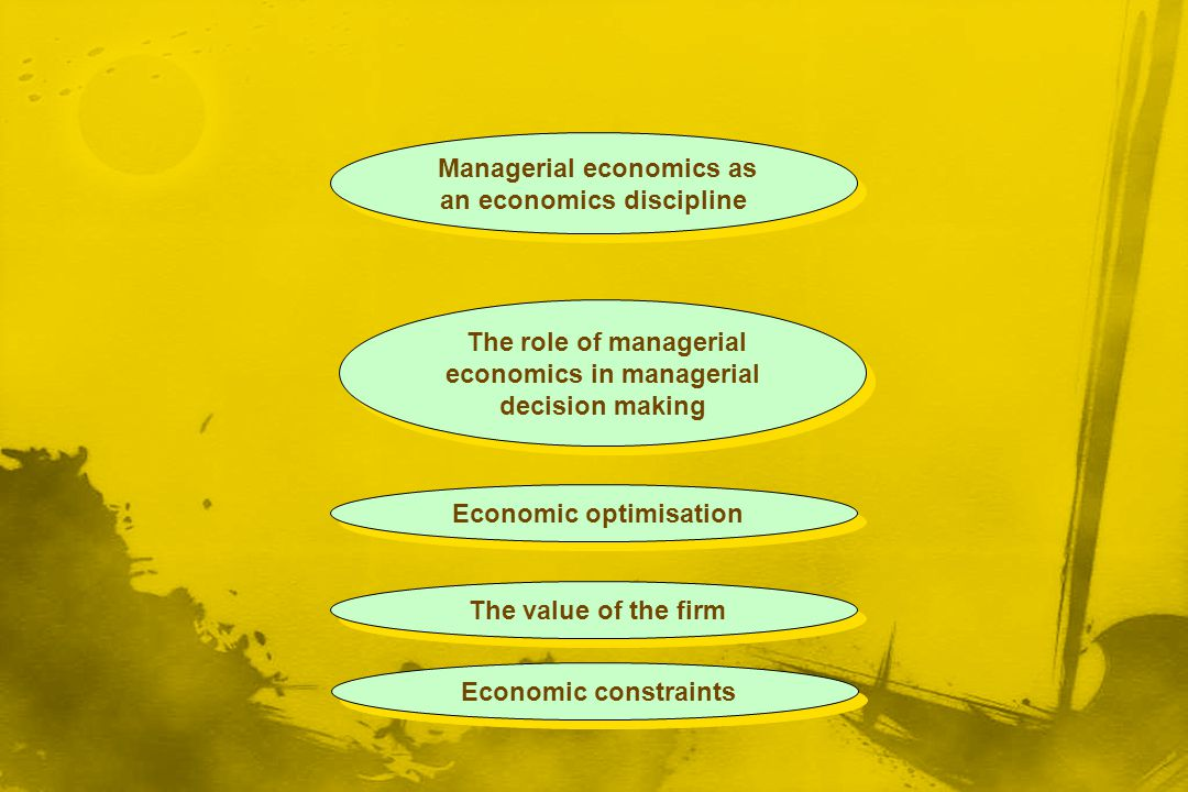 Economic optimisation The value of the firm Economic constraints The role of managerial economics in managerial decision making Managerial economics a