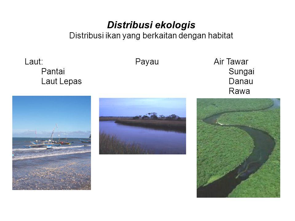 Distribusi ikan pada paparan benua Sumber: Moyle & Cech, 2004
