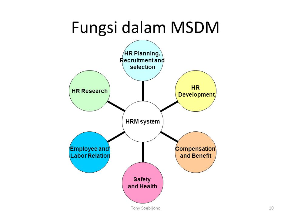 Fungsi dalam MSDM 10Tony Soebijono HRM system HR Planning, Recruitment and selection HR Development Compensation and Benefit Safety and Health Employee and Labor Relation HR Research