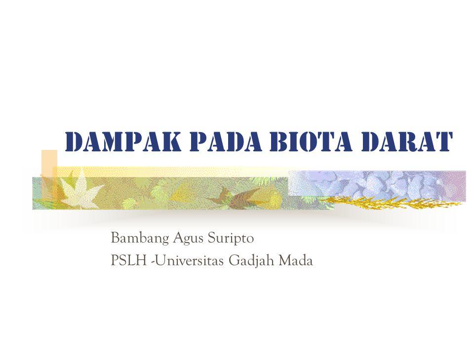 DAMPAK PADA BIOTA DARAT Bambang Agus Suripto PSLH -Universitas Gadjah Mada