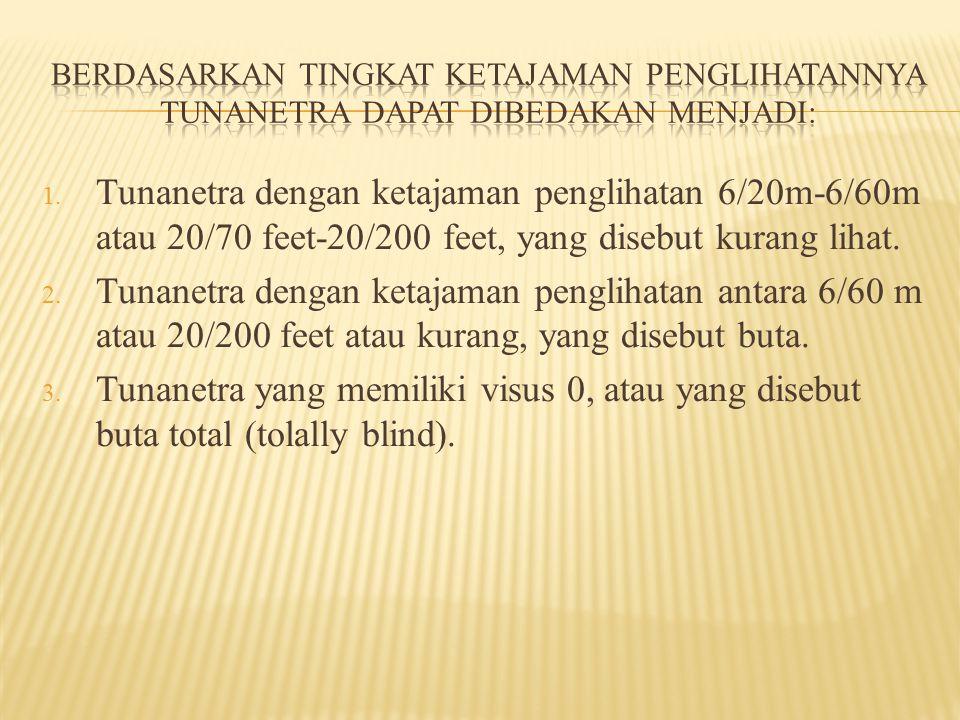 1.ketidakmampuan melihat taraf sedang (moderate visual disability).