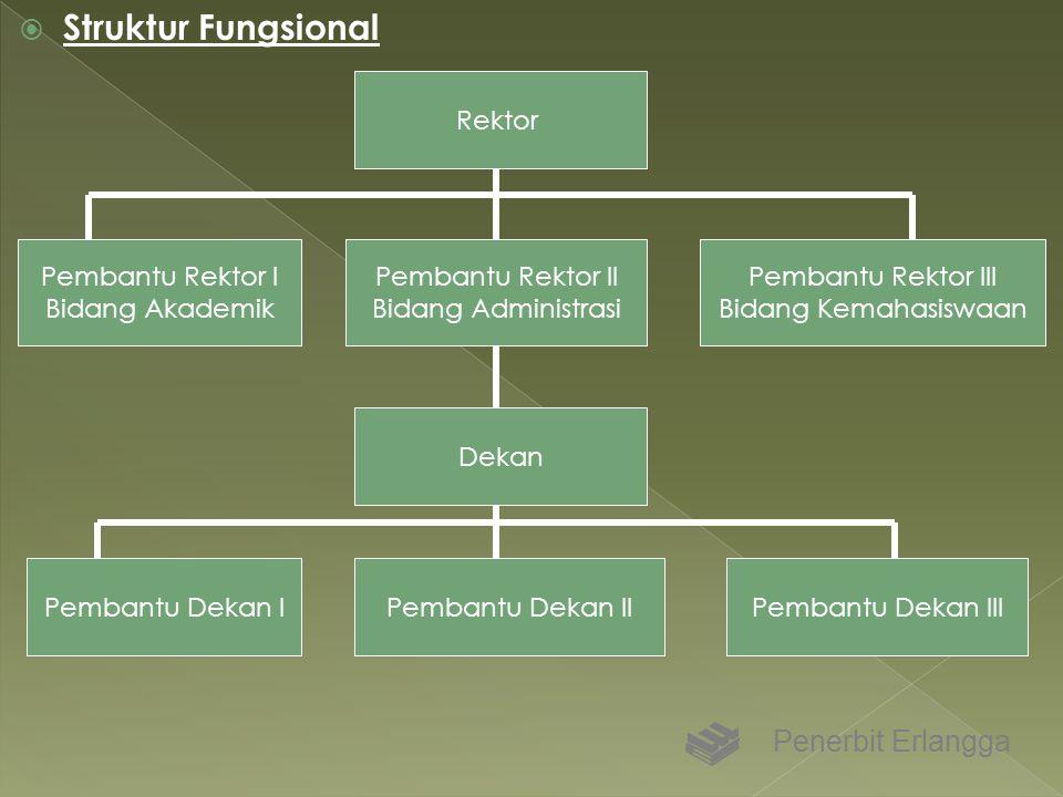  Struktur Fungsional Penerbit Erlangga Rektor Pembantu Rektor II Bidang Administrasi Dekan Pembantu Dekan IIPembantu Dekan IPembantu Dekan III Pemban