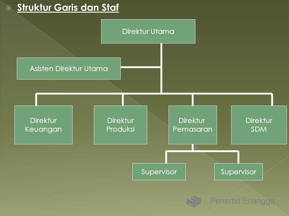  Struktur Garis dan Staf Penerbit Erlangga Direktur Utama Asisten Direktur Utama Direktur Keuangan Direktur Produksi Direktur Pemasaran Direktur SDM