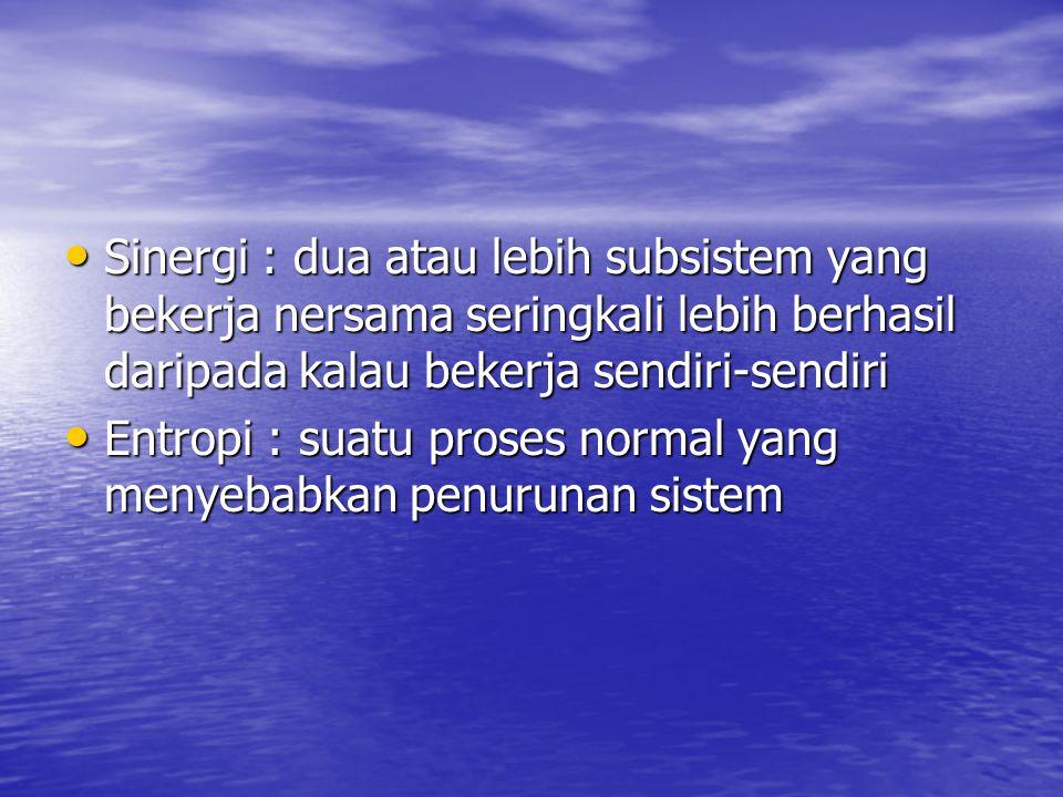 Sinergi : dua atau lebih subsistem yang bekerja nersama seringkali lebih berhasil daripada kalau bekerja sendiri-sendiri Sinergi : dua atau lebih subs