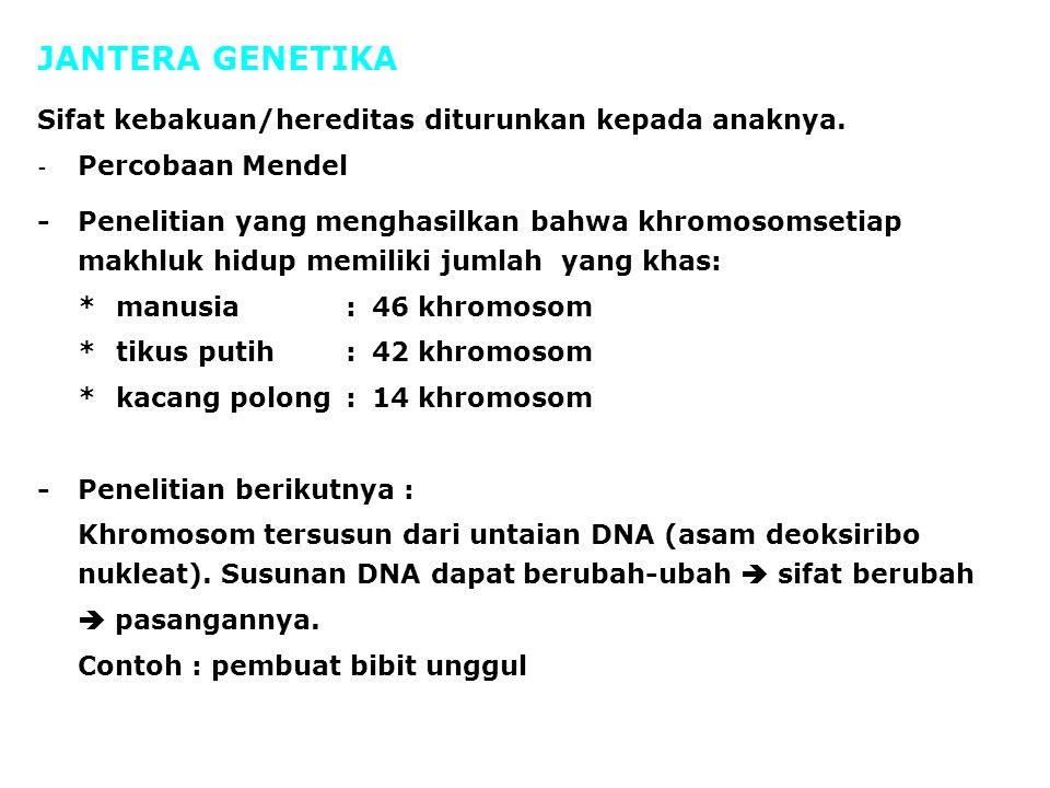 Sifat kebakuan/hereditas diturunkan kepada anaknya. - Percobaan Mendel -Penelitian yang menghasilkan bahwa khromosomsetiap makhluk hidup memiliki juml