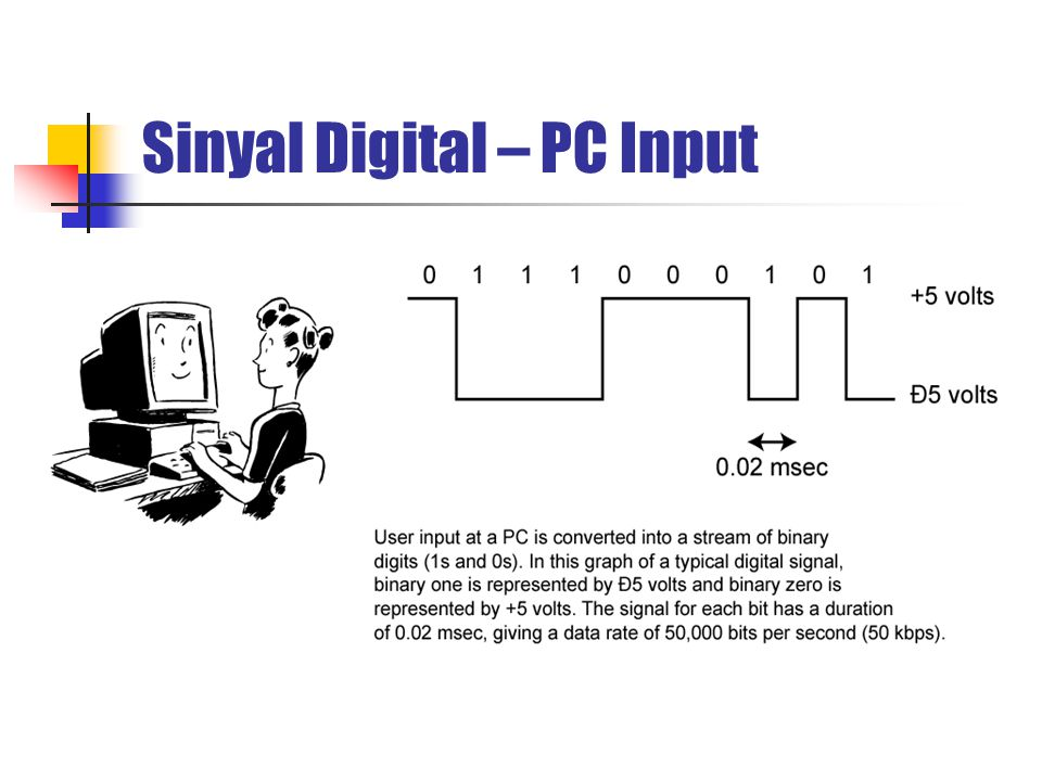 Sinyal Digital – PC Input