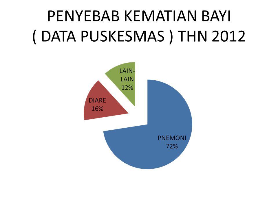 PENYEBAB KEMATIAN BAYI ( DATA PUSKESMAS ) THN 2012