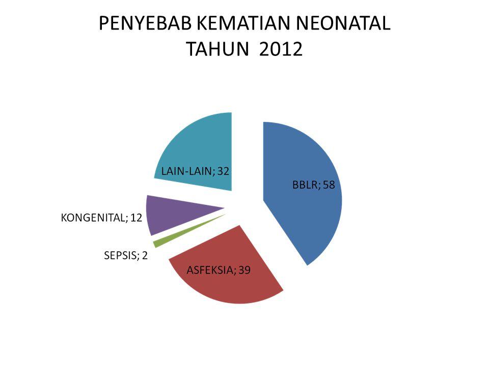 PENYEBAB KEMATIAN NEONATAL TAHUN 2012
