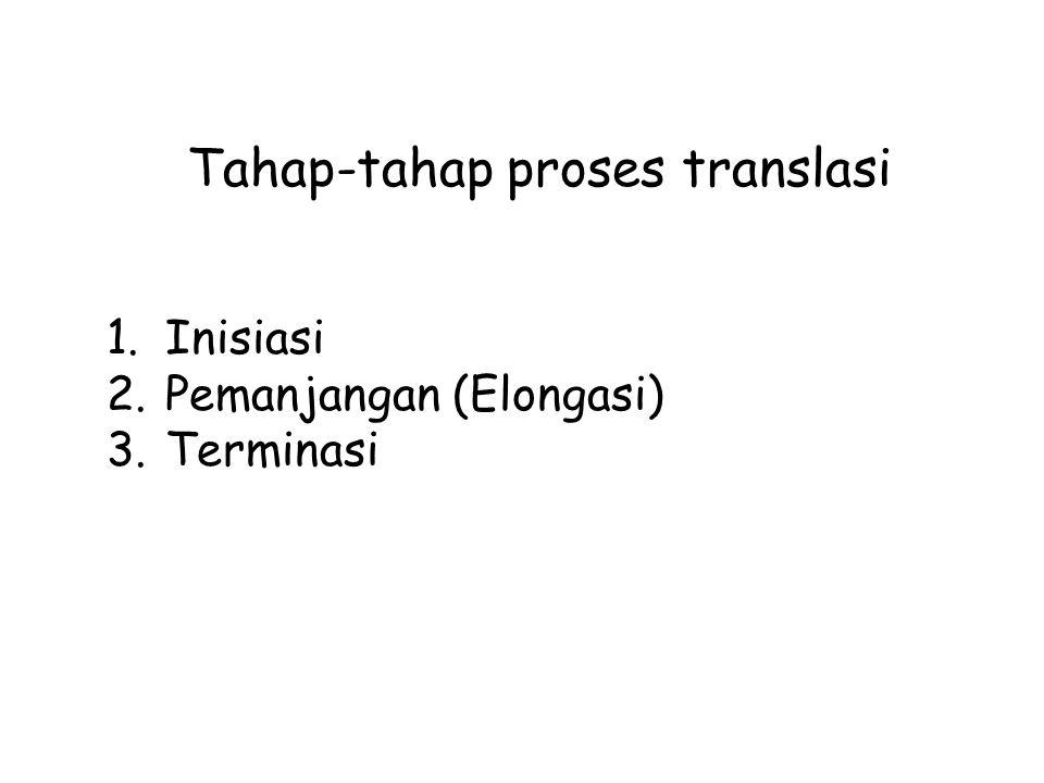 Tahap-tahap proses translasi 1.Inisiasi 2.Pemanjangan (Elongasi) 3.Terminasi
