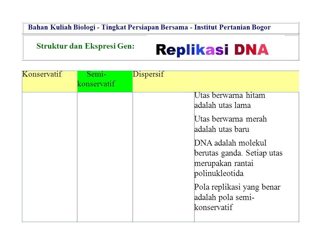 KonservatifSemi- konservatif Dispersif Utas berwarna hitam adalah utas lama Utas berwarna merah adalah utas baru DNA adalah molekul berutas ganda. Set