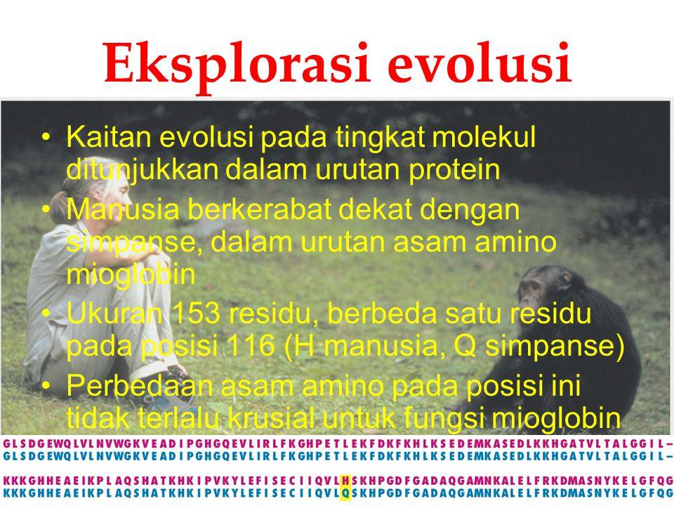 KI3062Zeily Nurachman1 Eksplorasi evolusi Kaitan evolusi pada tingkat molekul ditunjukkan dalam urutan protein Manusia berkerabat dekat dengan simpans