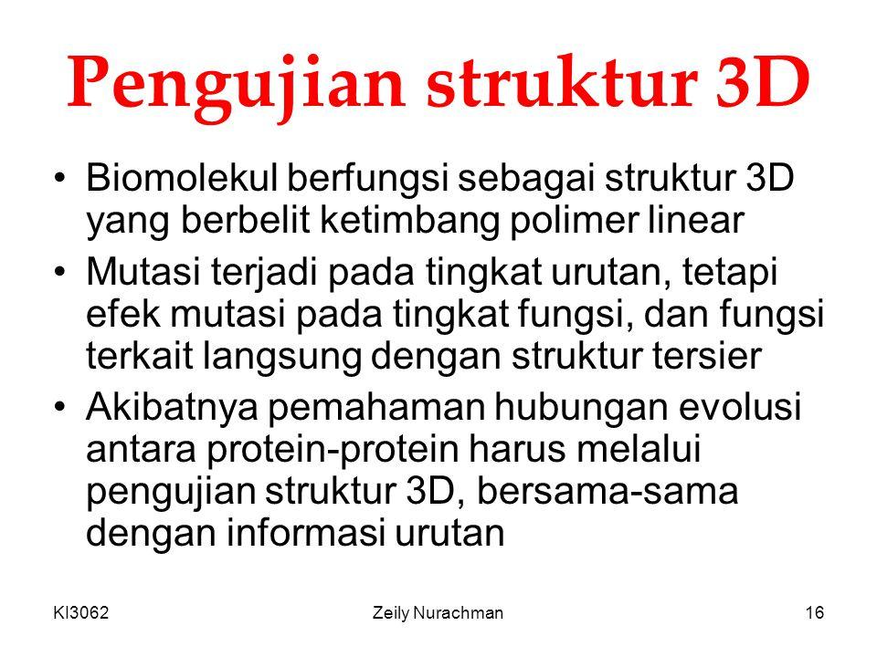 KI3062Zeily Nurachman16 Pengujian struktur 3D Biomolekul berfungsi sebagai struktur 3D yang berbelit ketimbang polimer linear Mutasi terjadi pada ting