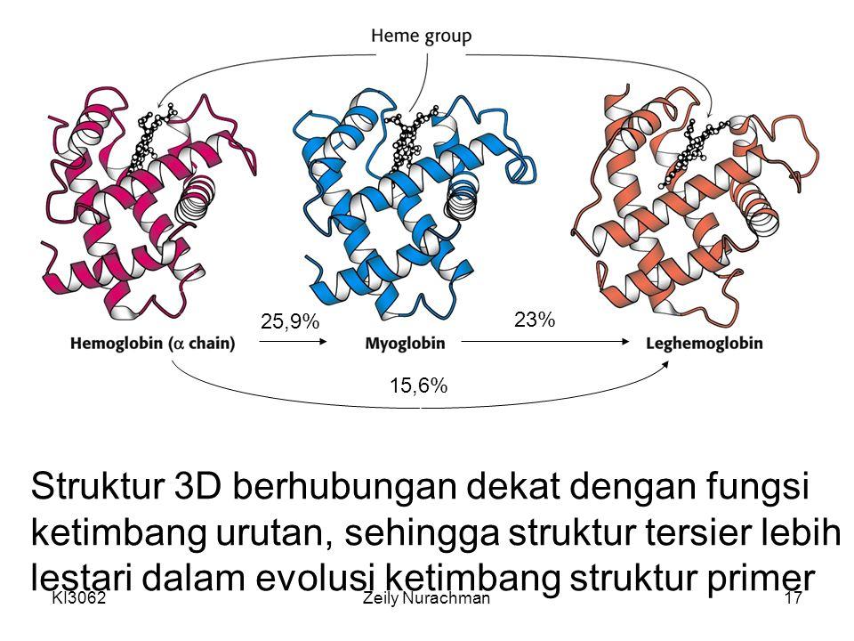KI3062Zeily Nurachman17 Struktur 3D berhubungan dekat dengan fungsi ketimbang urutan, sehingga struktur tersier lebih lestari dalam evolusi ketimbang
