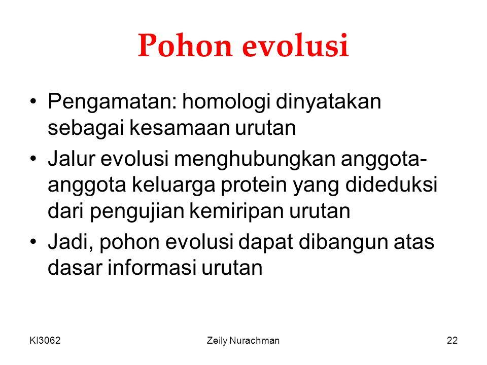 KI3062Zeily Nurachman22 Pohon evolusi Pengamatan: homologi dinyatakan sebagai kesamaan urutan Jalur evolusi menghubungkan anggota- anggota keluarga pr