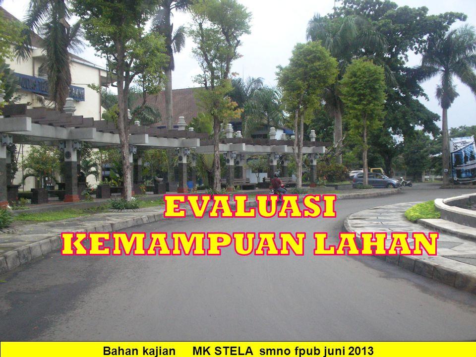 Bahan kajian MK STELA smno fpub juni 2013
