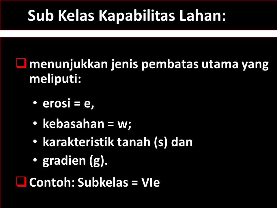 Sub Kelas Kapabilitas Lahan:  menunjukkan jenis pembatas utama yang meliputi: erosi = e, kebasahan = w; karakteristik tanah (s) dan gradien (g).  Co