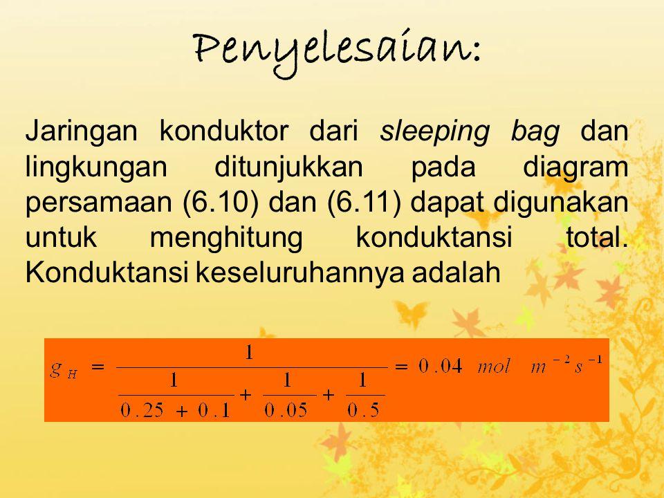 Jaringan konduktor dari sleeping bag dan lingkungan ditunjukkan pada diagram persamaan (6.10) dan (6.11) dapat digunakan untuk menghitung konduktansi