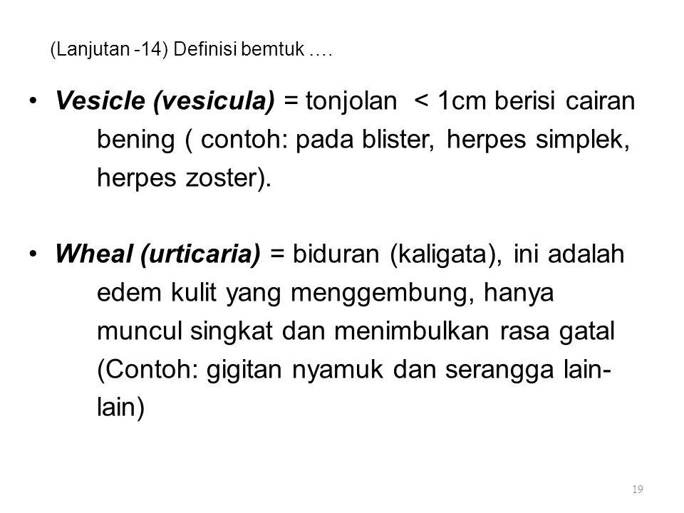 (Lanjutan -14) Definisi bemtuk …. Vesicle (vesicula) = tonjolan < 1cm berisi cairan bening ( contoh: pada blister, herpes simplek, herpes zoster). Whe
