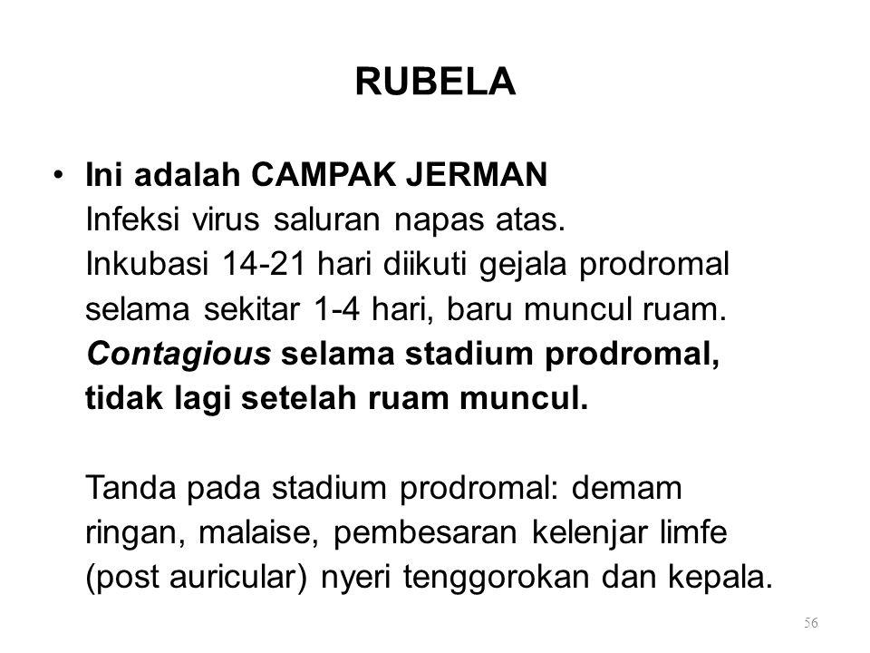 RUBELA Ini adalah CAMPAK JERMAN Infeksi virus saluran napas atas. Inkubasi 14-21 hari diikuti gejala prodromal selama sekitar 1-4 hari, baru muncul ru